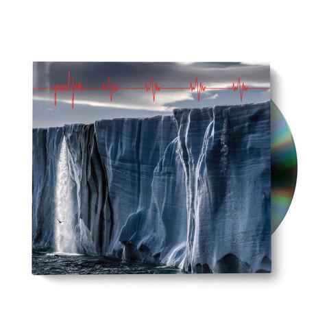 √Gigaton von Pearl Jam - CD jetzt im uDiscover Shop