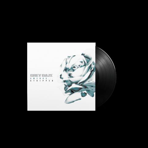 √Amends...Stripped (Ltd. Vinyl 12'' EP) von Grey Daze - lp jetzt im uDiscover Shop